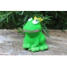 Frog king duck Lanco