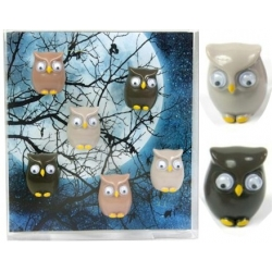 Mini fridge magnets owl  Order also Magnets