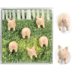 Mini fridge magnets pig  Order also Magnets
